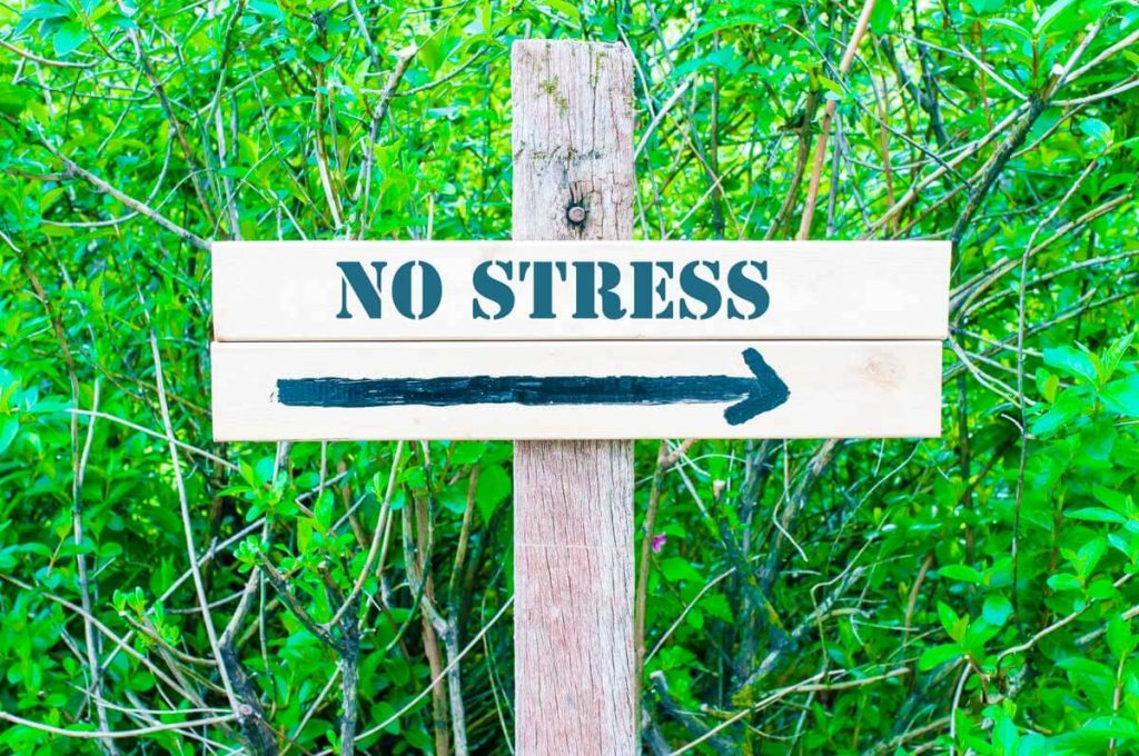 effet du cbd sur le stress